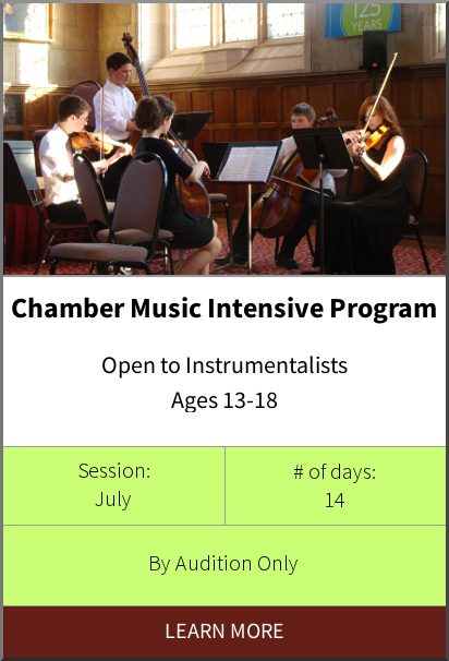 Philadelphia International Music Camp & Festival - Project 440 Program
